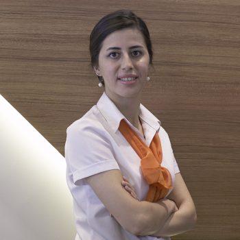 Sevilay Akkol